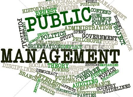 New public management